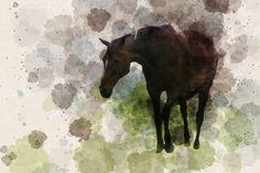 Art Reference, Moose Art, Horses, Animals, Animales, Animaux, Animal, Animais, Horse