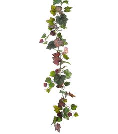 Bloom Room 66 Grape Ivy Garland with Berry Floral & Wedding Floral Floral Stems Sprays & Bus Vine Drawing, Wall Drawing, Plant Drawing, Grape Tree, Grape Plant, Grape Vines, Grape Wallpaper, Texture Photoshop, Ivy Plant Indoor