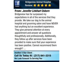 Bridgeview has far surpassed my expectations in all of the services that they provide.  We...