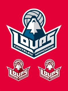 Loups Canteleu Maromme, french volley-ball team by Julien NICOLAS, via Behance