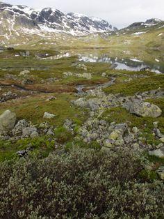 Hardangervidda Telemark