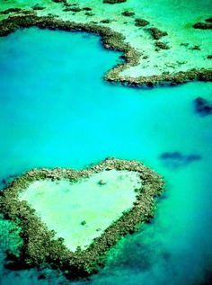 Romantic Heart Reef in the Great Barrier Reef
