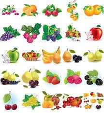 Resultado de imagen para dibujos de frutas