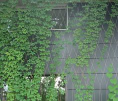 Stainless steel wire mesh / diamond mesh - I-SYS - GREENERY - RONSTAN
