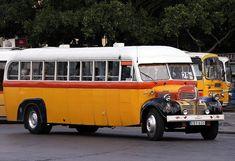 Malta Bus, Bus Coach, Busses, Commercial Vehicle, Public Transport, Coaches, Dodge, Chevrolet, Transportation