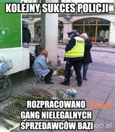 Pin by Krzysia on Humor Best Memes, Dankest Memes, Jokes, Polish Memes, Very Funny Memes, Funny Mems, Reaction Pictures, Good Mood, Nice View