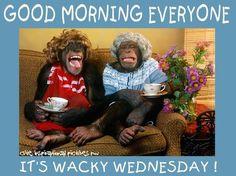Good Morning Everyone! It's Wacky Wednesday!