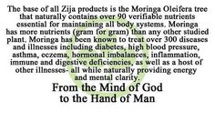 Moringa Nutrition - Zija is unmatched!