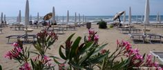 Spiaggia Chiosco Fabiola a #cavallinotreporti (VE)