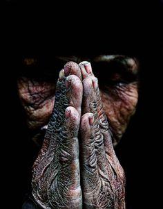pray, bow