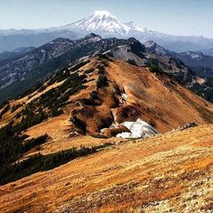 Amazing view from Knife Edge traverse in the Goat Rocks Wilderness. Photo by @rootless_boots #LiveWashington to be featured. #PCT #MtRainier