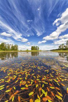 Karelij. Ladoga lake