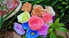Mini Mini Roses
