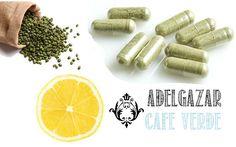 Un estudio cientifico publicado en una revista francesa demostró efectos reductores de grasa, del cafe verde (no tostado) un extracto de grano de café llamada Svetol. A un grupo de voluntarios se le dio 400 mg del extracto de café verde descafeinado Svetol a diario, y el segundo grupo recibió un placebo.