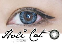 Highlight your lovely eyes with GEO HoliCat Series. Finish off your fashion statement using any of the 5 featured unique cosmetic contacts in brown, grey, blue, and choco. Candy S, Lovely Eyes, Circle Lenses, Colored Contacts, Fashion Stylist, Geo, Highlight, Cosmetics, Korean