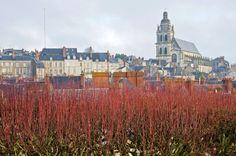 #france, #loirevallley, #blois Orașul Blois- acoperișuri, ceață și multe scări