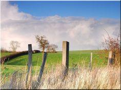 Razor-sharp fence board – Garden surround —————– Boards, Robinie Ride … - Do Garden Pasture Fencing, Horse Fencing, Fences, Garden Edging, Fence Garden, Fence Boards, Rustic Fence, Ride 2, Metal Fence