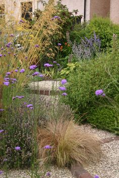 Landscape Border Designs: Superb Garden Edging Ideas Garden edging is a fixed material that functions as a crisp border between beds and other areas. Various stylish garden edging ideas are available to build a well-designed landscape. Pebble Garden, Dry Garden, Gravel Garden, Garden Edging, Gravel Front Garden Ideas, Garden Paths, Seaside Garden, Coastal Gardens, Beach Gardens