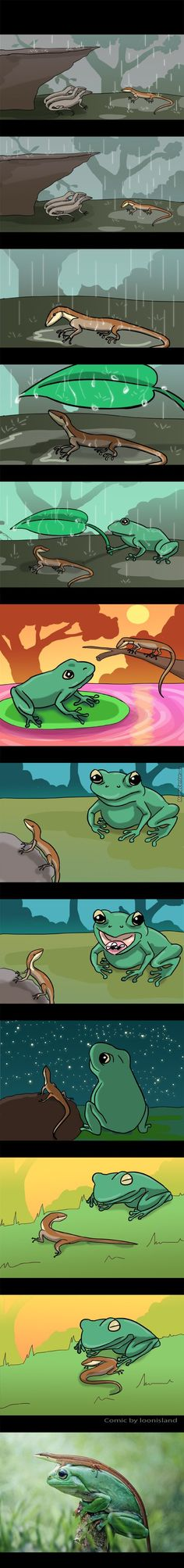 Sad yet funny how amphibians are more accepting than humans. Cute Funny Animals, Cute Baby Animals, Funny Cute, Animals And Pets, Super Funny, Amphibians, Reptiles, Lizards, Animal Pictures