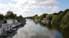This is Eel Pie Island, one of around 180 river islets – known as 'eyots' or 'aits' – on the Thames, born of the river's meandering, 184-mile path from the Cotswold hills to the North Sea.