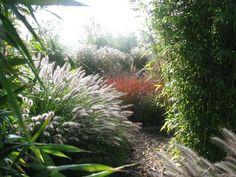 Grassenerf - Tuinontwerp