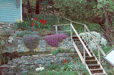 http://www.gardening.cornell.edu/homegardening/feature_gardening/img/photo_steep-slope_lg.jpg