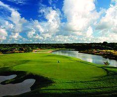 Golf at Punta Cana,  Hard Rock Hotel & Casino Punta Cana, Dominican Republic