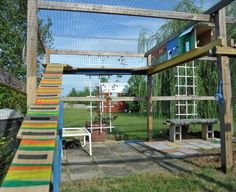 Cat house or catio? This outdoor space in Madison County is cool for cats (Cool Spaces) (photos, video) | al.com