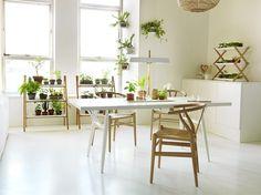 Kekkilä. Vihreä koti ympäri vuoden. Kasvata itse superruokaa tai sisusta kasveilla - ja voi hyvin!