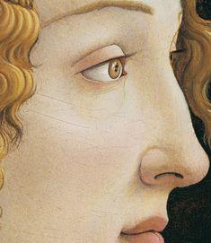 """""""Portrait de Simonetta Vespucci (detail)"""" Botticelli circa 1480"""