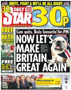 """ Daily Star Now let's make Britain Great again"" Newspaper Front Pages, Campaign Slogans, Eu Referendum, Daily Star, Conservative News, More Fun, Britain, Let It Be, Reading"