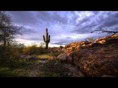 Museums and Culture in Phoenix