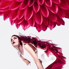 "Blooming Dahlia. PH— @notyouramericandream  Models — Anna Kibik ""Andy Fiord Models"", @ann_prrr996  MUA — Polina Vinogradova  Style/Fashion designer — @aleksandraberesnevadesign . #igladesign #fashion #art #vogue #design #fashiondesigner #designing #photography #photooftheday #photo #inspiration #style #woman #czech #dress #brand #prague #girl #instalike #instagood #photoofday #illustrationoftheday #copiky #aleksandraberesneva Fashion Art, Style Fashion, Fashion Design, Prague, Dahlia, Anna, Bloom, Models, Woman"