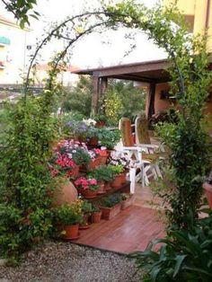 Oltre 1000 idee su rose rampicanti su pinterest scherma - Archi per giardino ...