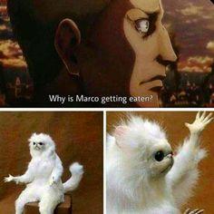 Attack on Titan meme Aot Memes, Funny Memes, Hilarious, Eren X Mikasa, Armin, All Anime, Anime Manga, Manga Boy, Anime Boys