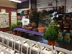 Proven Winners at Calloway's Nursery in North Plano Proven Winners, This Is Us, Planter Pots, Nursery, Baby Room, Child Room, Babies Rooms, Kidsroom