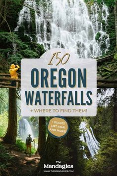 There are so many waterfalls in Oregon to explore, there's one to see no matter where you travel in the state! We're sharing the most famous Oregon waterfalls here, with tips, maps, and downloadable bucket lists to print too! #oregon #PNW #oregonstate #PacificNorthwest #portland #waterfalls Famous Waterfalls, Oregon Waterfalls, Forest Waterfall, Waterfall Hikes, Oregon Road Trip, Oregon Travel, Ramona Falls, Multnomah Falls, Cascade Mountains