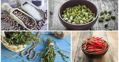 10 erbe e spezie che aiutano a mantenere la linea