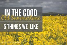 In the Good Old Summertime - Five Things We Like   @HSLDABlog