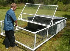 Homemade PVC Chicken Tractor Moveable Pen Project Homesteading  - The Homestead Survival .Com
