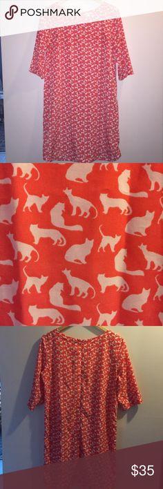 Gap CAT pattern shift dress Cat pattern shift dress from gap. Back zip. 100% polyester GAP Dresses