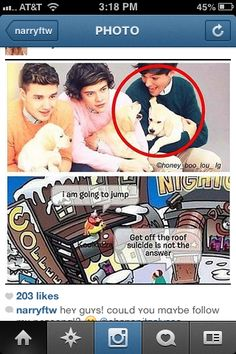 LOOK AT LOUIS!!! As if the puppy is going to make a face back.  I can't.....I can't even.. just.. I can't...