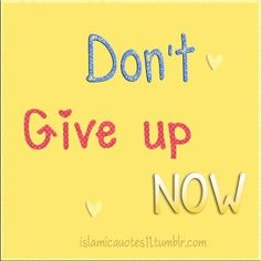 Don't give up Now...