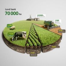 Agricultural infographic by Anton Egorov