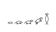 ... Teoría de la evolución de Darwin.