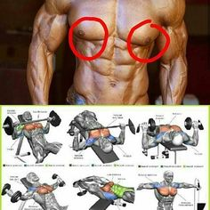 Workout Routines & Training Programs Fitness Training Programs Physical fitness is the state of the human body when it is in perfec. Weight Training Workouts, Gym Workout Tips, Biceps Workout, Fitness Workouts, Fun Workouts, Body Workouts, Workout Routines, Fitness Plan, Interval Training