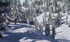 Ski Trip Bucket list ... http://www.boston.com/travel/explorene/specials/ski/blog/2014/11/ski_bucket_list.html