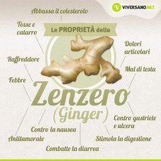 Proprietà dello Zenzero