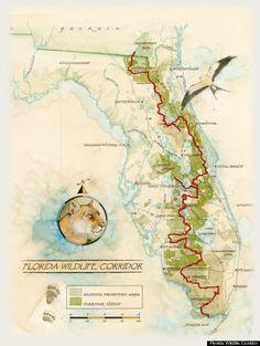 The Florida Wildlife Corridor
