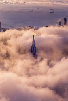 San Francisco Transamerica Building in the clouds. ~ Join the Seen In San Francisco Facebook Group to share your SF photos or to enjoy the pics in your feed https://www.facebook.com/groups/seeninsanfrancisco/